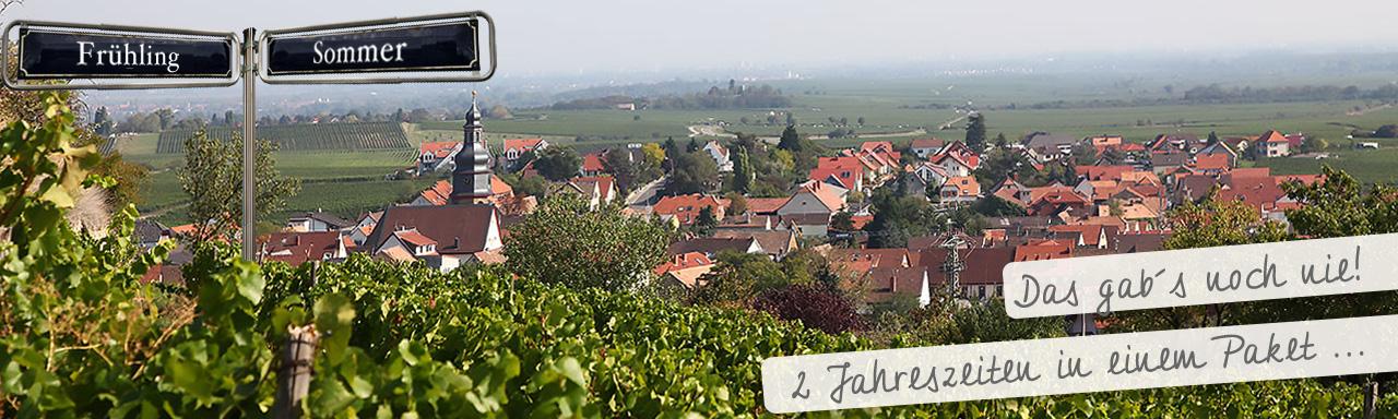 Weinpaket 2 Jahreszeiten